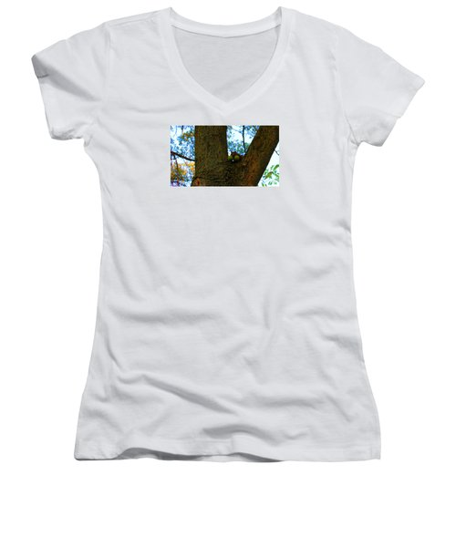 Women's V-Neck T-Shirt (Junior Cut) featuring the photograph Grateful Tree Squirrel by Michael Rucker