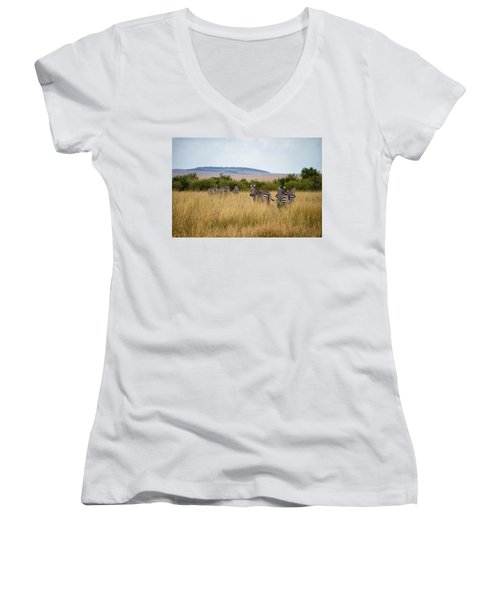 Grazing Zebras Women's V-Neck T-Shirt