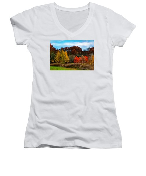 Great Brook Farm Autumn Women's V-Neck (Athletic Fit)