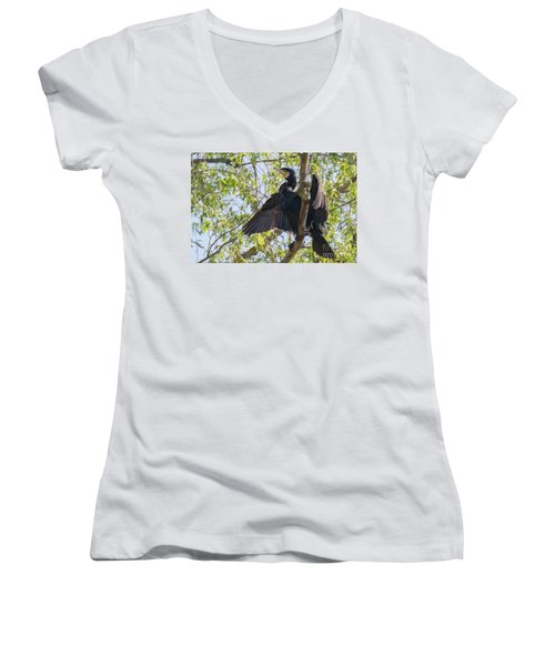 Great Cormorant - High In The Tree Women's V-Neck T-Shirt (Junior Cut) by Jivko Nakev