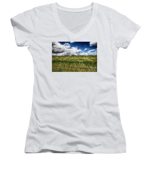 Green Fields Women's V-Neck T-Shirt (Junior Cut) by Douglas Barnard