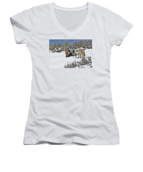 Grizzly With Coyote Women's V-Neck