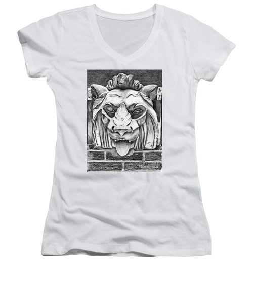 Guardian Lion Women's V-Neck T-Shirt