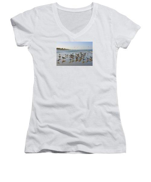 Women's V-Neck T-Shirt (Junior Cut) featuring the photograph Gulls And Terns On The Sanbar At Lowdermilk Park Beach by Robb Stan