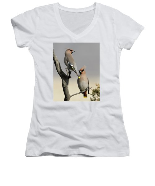 Hanging Out With The Boys Women's V-Neck T-Shirt