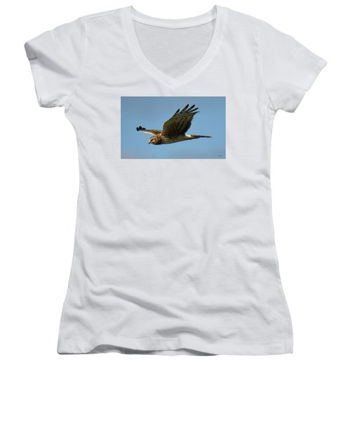 Harrier In Flight Women's V-Neck