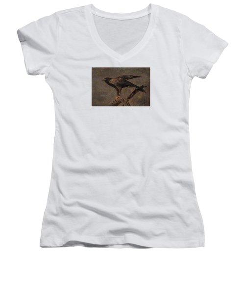 Harris's Hawk Women's V-Neck T-Shirt