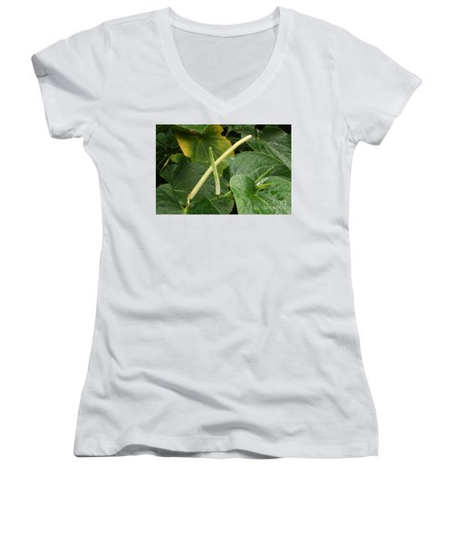 Hawaiian Kava Women's V-Neck T-Shirt