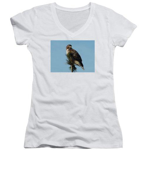 Hawk Atop Tree Women's V-Neck T-Shirt (Junior Cut) by Karen Molenaar Terrell