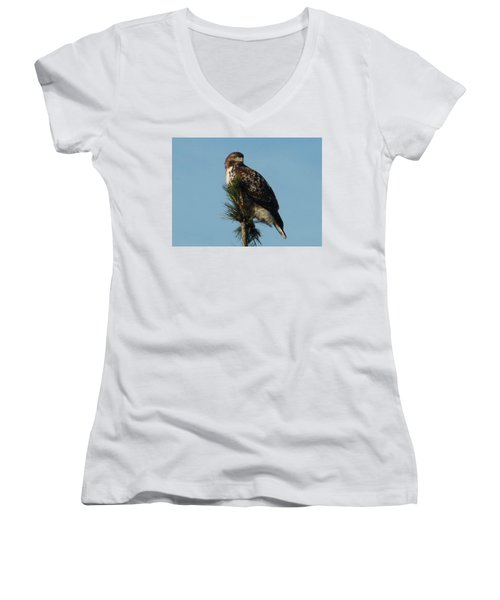 Hawk Atop Tree Women's V-Neck (Athletic Fit)