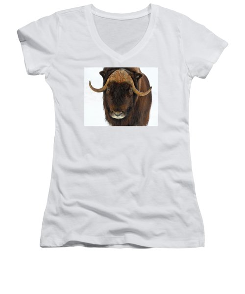 Head Butt Women's V-Neck T-Shirt (Junior Cut) by Tony Beck