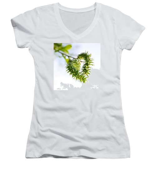 Heart In Nature Women's V-Neck T-Shirt