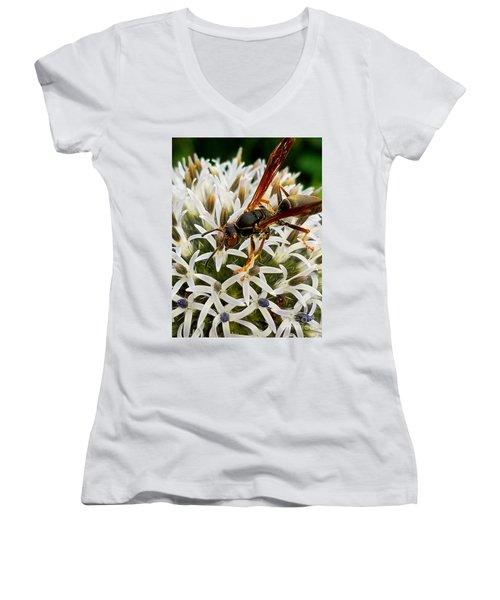 Hello, Wasp Women's V-Neck
