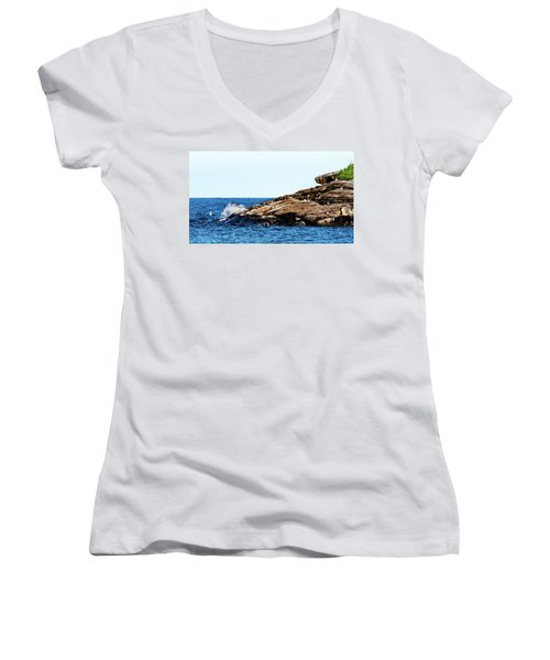 Herring Gull Picnic Women's V-Neck