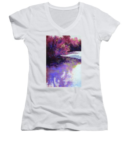 Hidden Treasures Women's V-Neck