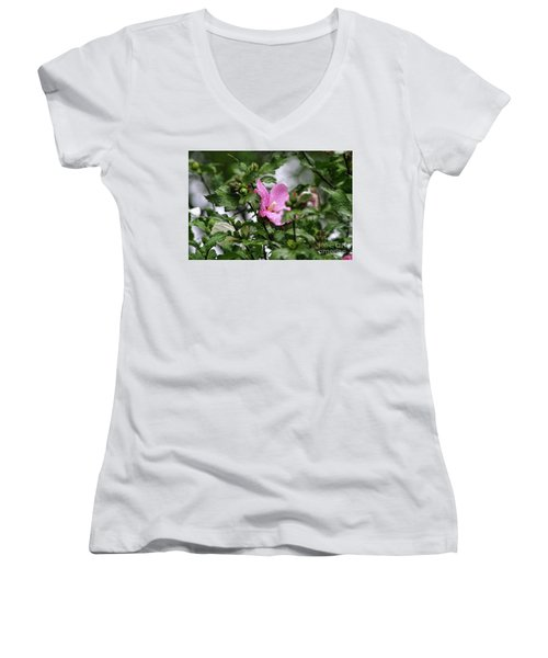 Hide And Seek Women's V-Neck T-Shirt (Junior Cut) by Joan Bertucci