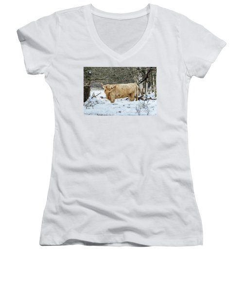 Highlander In Winter Women's V-Neck (Athletic Fit)