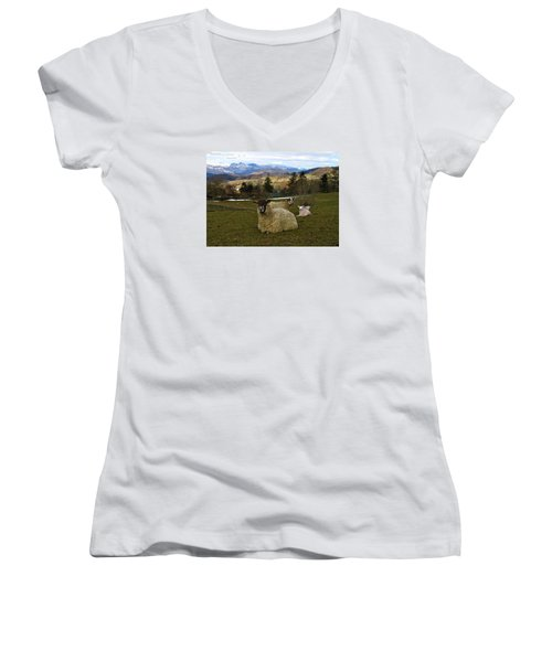 Hill Sheep Women's V-Neck (Athletic Fit)