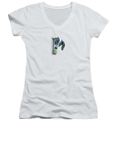 Women's V-Neck T-Shirt (Junior Cut) featuring the photograph Home Is Where Your Dachshund Is by Mark Andrew Thomas