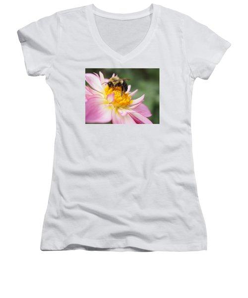 Honey Bee Women's V-Neck (Athletic Fit)