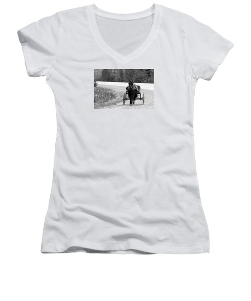 Horse And Buggy Women's V-Neck T-Shirt (Junior Cut) by Marjorie Imbeau