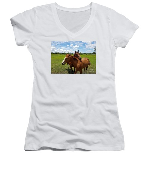 Horse Cuddles Women's V-Neck