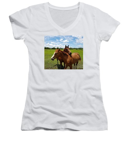 Horse Cuddles Women's V-Neck