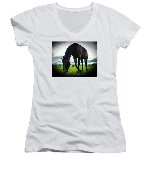 Horse Time Women's V-Neck