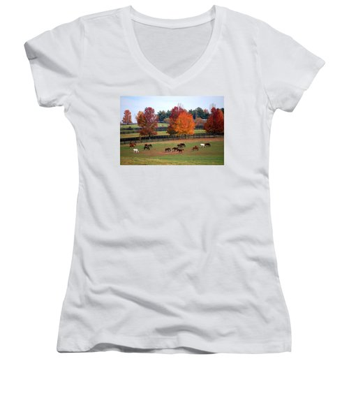 Women's V-Neck T-Shirt (Junior Cut) featuring the photograph Horses Grazing In The Fall by Sumoflam Photography