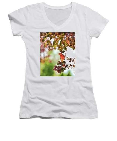 Women's V-Neck T-Shirt featuring the photograph House Finch Hanging Around by Kerri Farley
