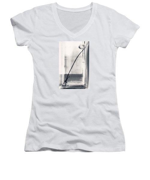 Houseplant #5147 Women's V-Neck T-Shirt (Junior Cut) by Andrey Godyaykin