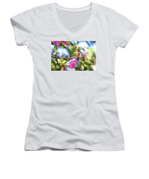 Humming Bird Pink Flowers Women's V-Neck T-Shirt
