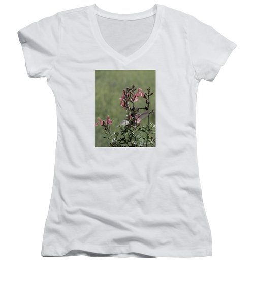 Hummingbird 1 Women's V-Neck (Athletic Fit)