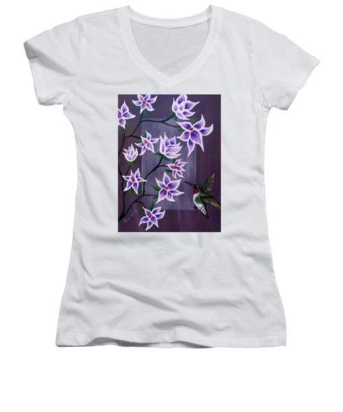 Hummingbird Delight Women's V-Neck T-Shirt