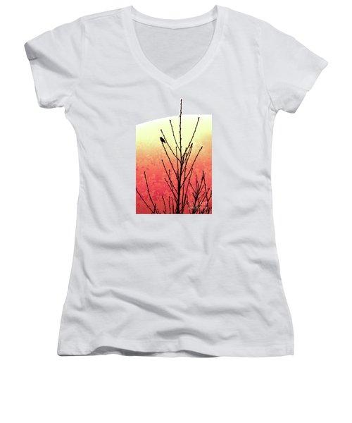 Hummingbird Peach Tree Women's V-Neck T-Shirt (Junior Cut) by Gem S Visionary