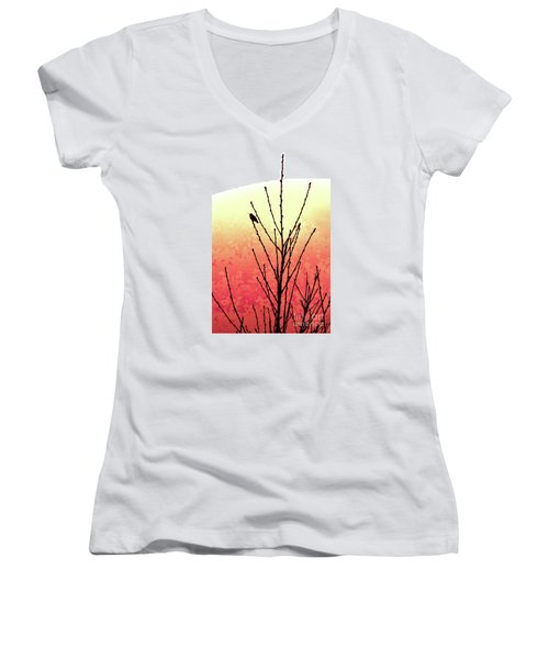 Hummingbird Peach Tree Women's V-Neck (Athletic Fit)