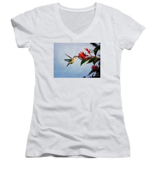 Hummingbird Red Flowers Women's V-Neck