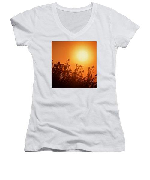 Impalila Island Sunset No. 3 Women's V-Neck T-Shirt