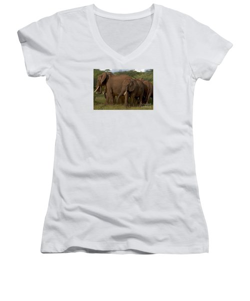 In Close For The Evening-signed Women's V-Neck T-Shirt (Junior Cut) by J L Woody Wooden