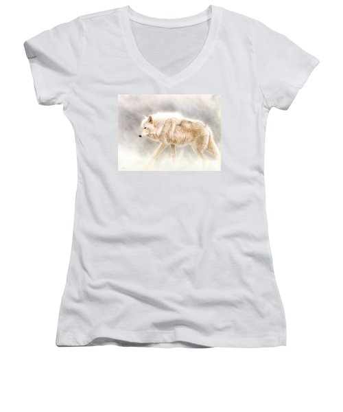 Into The Mist Women's V-Neck T-Shirt