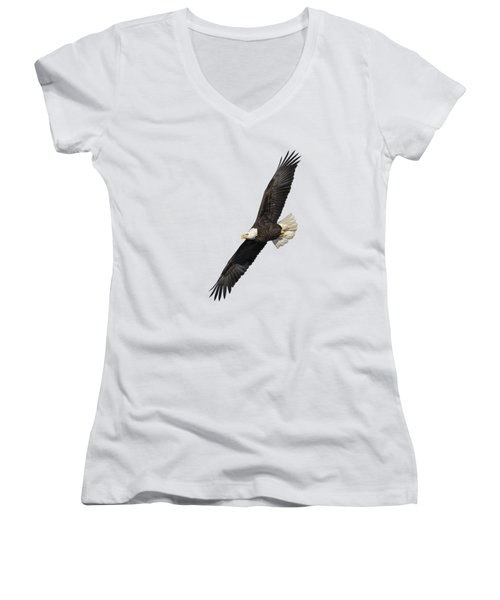 Isolated American Bald Eagle 2016-3 Women's V-Neck T-Shirt (Junior Cut) by Thomas Young