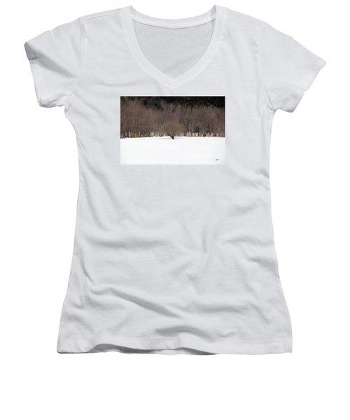 Isolated Women's V-Neck T-Shirt (Junior Cut)