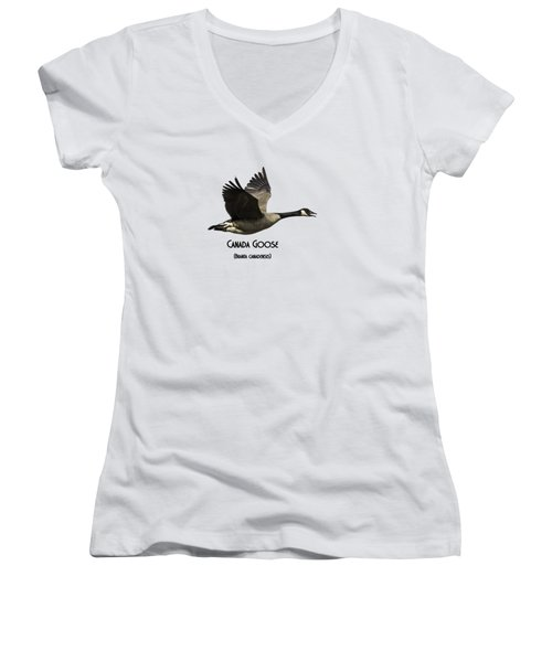 Isolated Canada Goose 2015-1 Women's V-Neck T-Shirt (Junior Cut) by Thomas Young