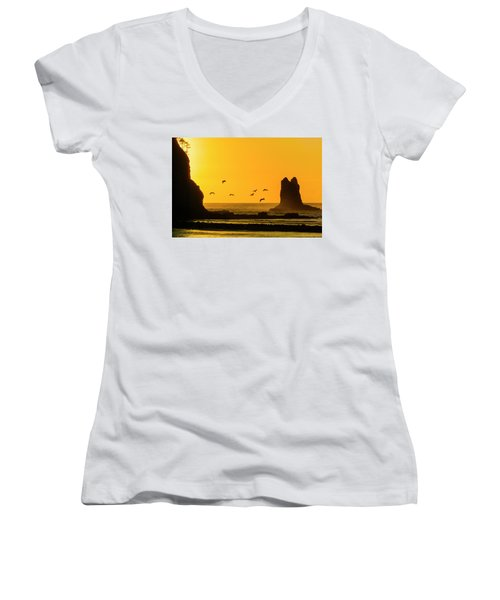 James Island And Pelicans Women's V-Neck