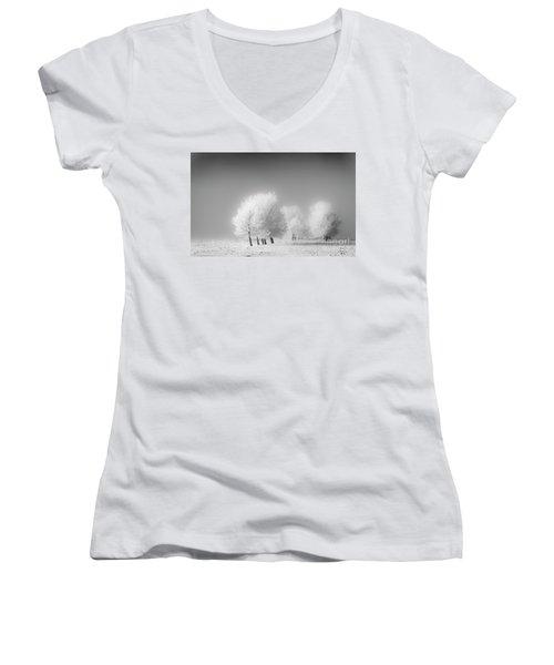 January Frost Women's V-Neck T-Shirt