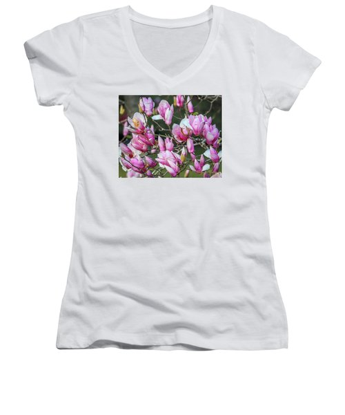 Women's V-Neck T-Shirt (Junior Cut) featuring the photograph Japanese Blooms by Gregory Daley  PPSA