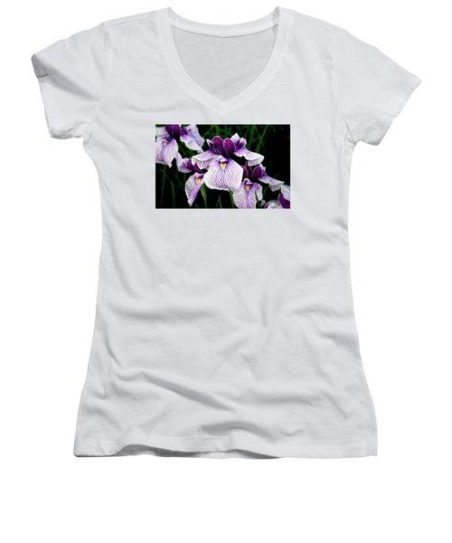 Japanese Water Iris In Purple 2714 H_2 Women's V-Neck T-Shirt