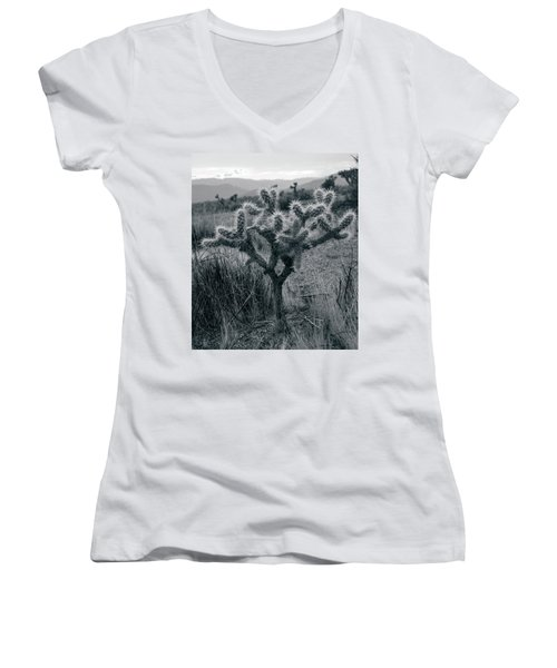 Joshua Tree Cactus Women's V-Neck (Athletic Fit)