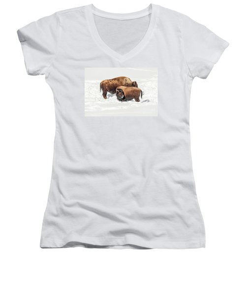 Women's V-Neck T-Shirt (Junior Cut) featuring the photograph Juvenile Bison With Adult Bison by Sue Smith