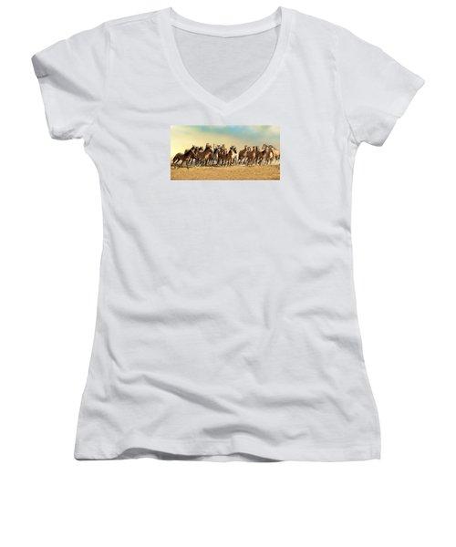 Kiger Mares Women's V-Neck T-Shirt